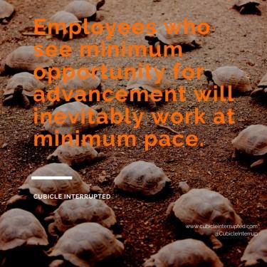 Minimum Pace (2)